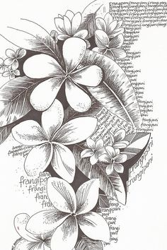 im going to do this for the third page of my gcse art! Already got an A* so im going to keep it up!