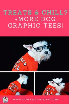 I love dog graphic tees!  I especially love the ones that are cute and funny.  Check this one out + find out where to get more.