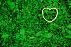 love everything green...