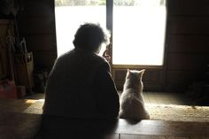 Watching the world together (Misao and Fukumaru the cat)