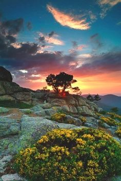 Solitude at sunset reminds us who we really are allowing us to drop the false identity we have carried all day and for a moment remember our vastness. ~MB DeMaria