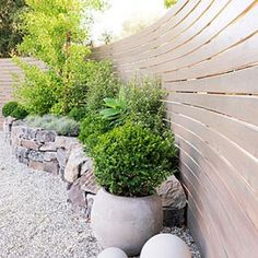 Low-water container plantings