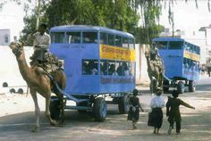 I must ride on one of these one day. Camel Bus by Paul Starkey Funny Photos, Cool Photos, Der Bus, Twisted Humor, People Of The World, Public Transport, Les Oeuvres, Recreational Vehicles, Transportation