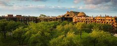 Disney Testing Complimentary Resort-To-Resort Transportation For Some Dining Locations
