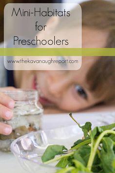 DIY Mini-Habitat for Preschoolers - easy, Montessori inspired way to explore biomes with preschoolers!
