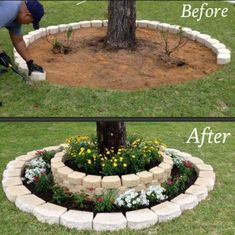 Do this around the trees that have the roots exposed, but with river rock instead.
