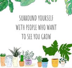 Plant Aesthetic, Quote Aesthetic, Positive People, Positive Quotes, Growing Quotes, Plants Quotes, House Plants Decor, Garden Quotes, Illustrators On Instagram