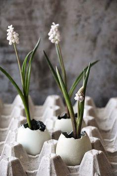 Tonalità naturali e tessuti mordibi e semplici anche sulla tavola. Qualche spunto per portare anche noi in casa uova, fiori e auguri!