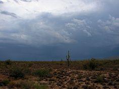 Monsoon time in Arizona
