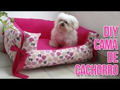 CAMA DE CACHORRO DIY | NEA SANTTANA - YouTube Pet Beds, Dog Bed, Animals And Pets, Cute Animals, Tyres Recycle, Animal Projects, Dog Sweaters, Patch Quilt, Dog Snacks