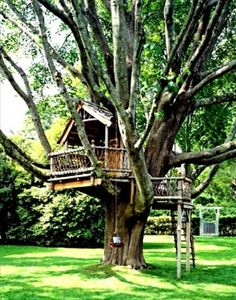 A big or small tree house bring lots of fun into backyard designs and create playful and youthful atmosphere. Tree house designs are wonderful backyard ideas that make adults and kids happy and joyful 10 Tree, In The Tree, Backyard Treehouse, Treehouse Ideas, Treehouses For Kids, Magic Treehouse, Backyard Playground, Tree House Plans, Tree House Homes