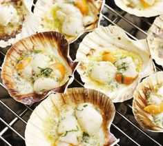 Annabel Langbein Roasted Scallops in the Half Shell with Lemon Caper Butter Recipe Scallops In Shell, Fresh Scallops, Scallop Shells, Fish Dishes, Seafood Dishes, Seafood Recipes, Cooking Recipes, Easy Recipes, Kitchens