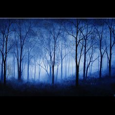 Items similar to Blue Fog Forest Hazy Abstract Landscape Art Painting Large Wall Art Original Landscape Tree Art Canvas Hand Painted Landscape Art by DROBART on Etsy Fog Photography, Easy Canvas Art, Forest Wallpaper, Easy Paintings, Acrylic Art, Tree Art, Large Wall Art, Abstract Landscape, Beautiful Landscapes
