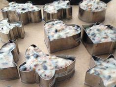 Koekjes voor vogels DIY Vogel vetbollen maken www.plukdedag.info