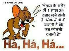 Tom N Jerry Wallpapers With Quotes Share Your Comment On The Funny  Pictures Trolls