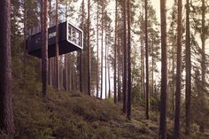 New Branch of Treetop Hotel Market Puts More Tourists Out on a Limb