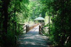 Hinson Bridge. Richmond County. North Carolina.