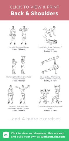Back & Shoulders – click to view and print this illustrated exercise plan created with #WorkoutLabsFit