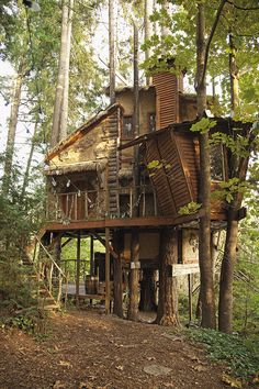 Victor Brothers' Treehouse, Western Washington (using maple, Douglas fir and hemlock - plus it's got a 'Hobbit' door! Treehouse Living, Building A Treehouse, Treehouse Ideas, Beautiful Tree Houses, Cool Tree Houses, Luxury Tree Houses, Future House, My House, Tree House Plans