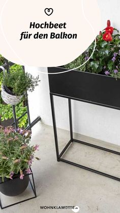 Ein Hochbeet für den Balkon verwöhnt Dich bis in den Winter hinein mit frischen, nährstoffreichen Kräutern, Obst und Gemüse. Doch auch Blumen fühlen sich hier richtig wohl. Zudem ermöglicht Dir die rückenschonende Arbeitshöhe eine einfache Pflege Deiner Pflanzen. Bei WOHNKLAMOTTE erfährst Du alles, was Du zur Bepflanzung eines Hochbeetes wissen musst. Entryway Tables, Furniture, Home Decor, Ornamental Plants, Potting Soil, Compost, Small Trees, Planting, Fruit And Veg