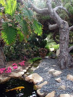 Peaceful is the essence of the meditation nook in your garden. Make it visually quiet. Comfortable seating, preferably on the ground. Shielded from the wind and cushioned away from activity and people, so you can let your guards down. (This is the Meditation Gardens in Encinitas)