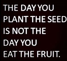 You have to take care of it.... taking care makes it grow ....and then one day you can enjoy the fruit ....