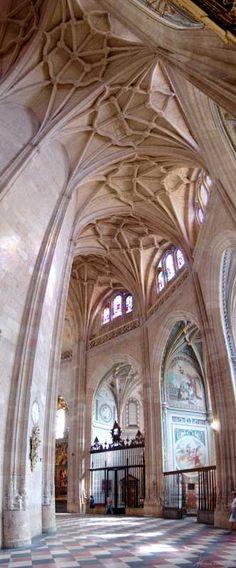 Cathedrals in Spain are just so magnificent!  ~ Interior Catedral de Segovia  España