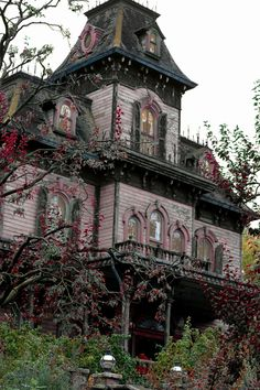 A haunted mansion. I've always been attracted to those.