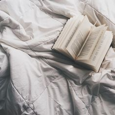 """3,711 lượt thích, 19 bình luận - danielle • 21 • melbourne  (@deckledpages) trên Instagram: """"merry christmas to you all ✨ i hope you have/have had a good day and get lots of books and spent…"""""""