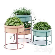 Garden Plant Stand, Garden Planters, Planter Pots, Plant Stands, House Plants Decor, Plant Decor, Diy Plante, Chlorophytum, Wood Joinery