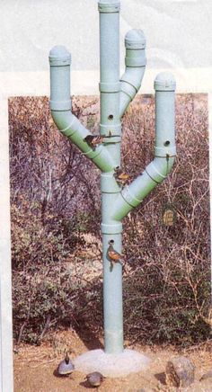 PVC Birdhouse in the form of a cactus. Description from pinterest.com. I searched for this on bing.com/images