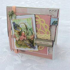 Anita's demo card