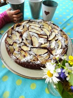 Schoko-Apfel-Kuchen