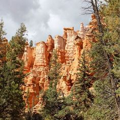 Even on stormy days dodging thunderstorms... Bryce Canyon is a beauty! ⚡️