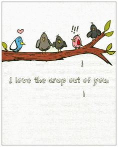 Funny love Birds- Anniversary card. engagement card.  love or friendship card. I love the crap out of you.
