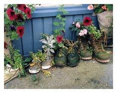 shoe flower pots