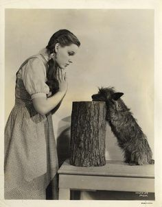 Dorothy and ToTo. I want this for my house some day