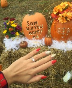 This is the perfect way to show off a fall proposal! And that ring is so stunning. <3