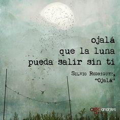Silvio rodriguez (960×960)