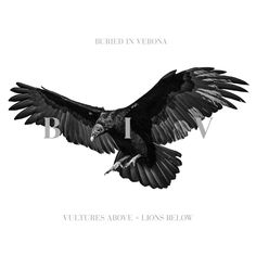 Buried in Verona have released a new music video Cant be Unsaid, from their upcoming album Vultures Above, Lions Below, which is due for release on August Metal Songs, Metal Albums, Heavy Metal Music, Band Photos, Best Rock, Alternative Music, Vulture, Bury, Verona