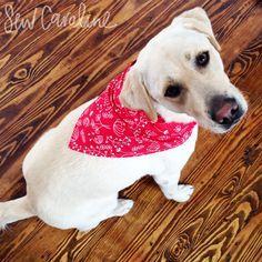 Dog Bandana - Free Pattern + Tutorial -