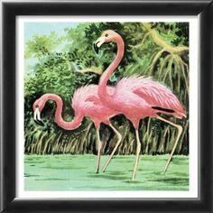 Two flamingos Lamina Framed Art Print