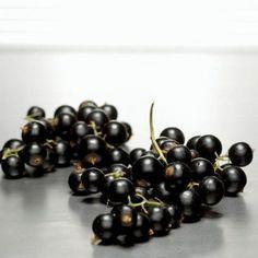 Nalewka z czarnej porzeczki na spirytusie. Co za aromat! Irish Cream, Black, Style, Liqueurs, Recipes, Swag, Black People, Recipies, Ripped Recipes
