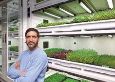 Tarren Wolfe, Urban Cultivator | BCBusiness