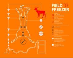 field dressing deer diagram enthusiast wiring diagrams u2022 rh rasalibre co Gutting a Deer Step by Step Gutting a Deer