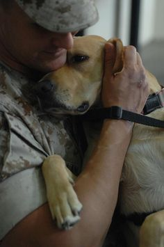 Truly man's best friend. Angel was rescued from an animal shelter by Canines for Service, and placed into loving arms.