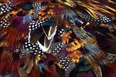 Lemarié — цветы и перья