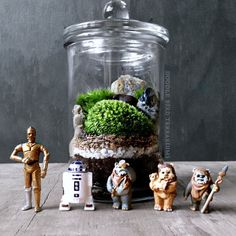 Decorate your home galaxy with this apothecary jar terrarium. It showcases a rugged landscape complete with live moss and your favorite Star Wars character. <br> <ul><li> A R2-D2, C-3PO or Ewok figure completes your Star Wars terrarium </li> <li> Handmade scenery includes live moss and river rocks </li> <li> Easy care instructions and spray bottle included </li> <li> Arrives fully assembled and ready to enjoy </li&...