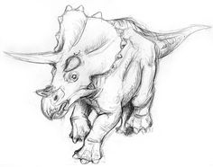 triceratop sketch - Google Search