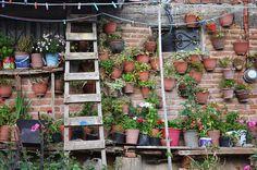 by RosaMaría {464 La vida compartida...}, via Flickr